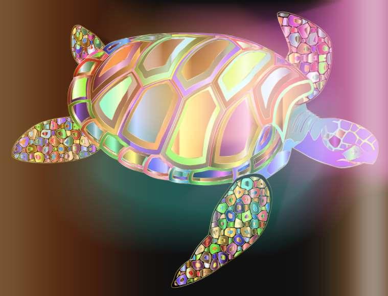 Vastu Tips, Significance of turtle in Vastu Shastra