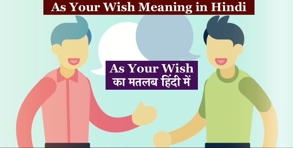 As Your Wish Meaning in Hindi