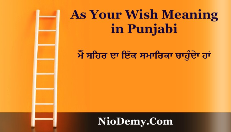 As Your Wish Meaning in Punjabi
