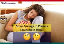 Mood Swings in Periods Meaning in Hindi