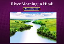 River Meaning in Hindi